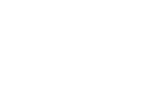 Wild Goose Filling